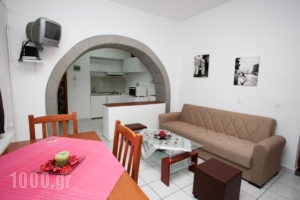 Anna Maria_accommodation_in_Room_Dodekanessos Islands_Patmos_Skala