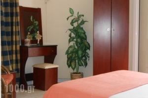 Neon Astron_best prices_in_Hotel_Central Greece_Fthiotida_Kamena Vourla