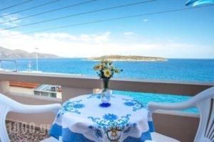 Pension Mylos_best deals_Hotel_Crete_Lasithi_Ammoudara