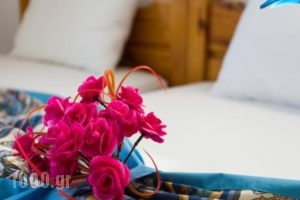 Pension Mylos_best prices_in_Hotel_Crete_Lasithi_Ammoudara