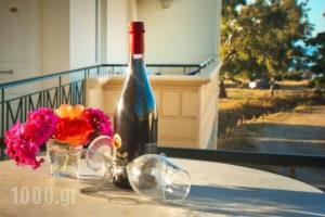 Suites Semiramis_best prices_in_Apartment_Crete_Chania_Chania City