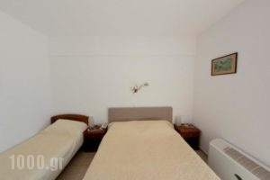 Bara_travel_packages_in_Macedonia_Halkidiki_Paradisos