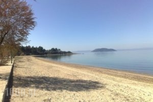 Bara_holidays_in_Hotel_Macedonia_Halkidiki_Paradisos
