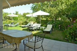 Lemonia Zakynthos Studios_accommodation_in_Room_Ionian Islands_Zakinthos_Agios Sostis
