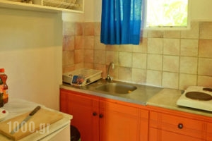 Lemonia Zakynthos Studios_holidays_in_Room_Ionian Islands_Zakinthos_Agios Sostis