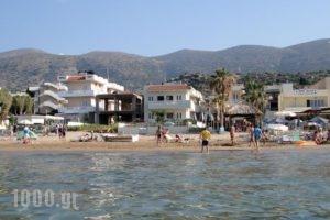 Seagull Studios_travel_packages_in_Crete_Heraklion_Malia