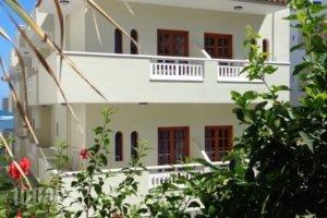 Seagull Studios_accommodation_in_Hotel_Crete_Heraklion_Malia