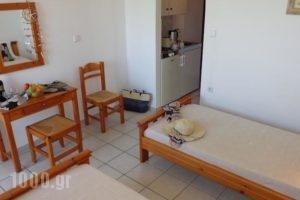 Seagull Studios_lowest prices_in_Hotel_Crete_Heraklion_Malia