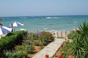 Seagull Studios_best deals_Hotel_Crete_Heraklion_Malia