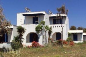 Studios Kima_accommodation_in_Hotel_Cyclades Islands_Iraklia_Iraklia Rest Areas