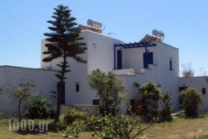 Studios Kima_travel_packages_in_Cyclades Islands_Iraklia_Iraklia Rest Areas