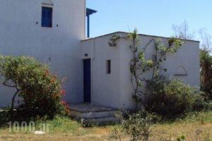 Studios Kima_lowest prices_in_Hotel_Cyclades Islands_Iraklia_Iraklia Rest Areas