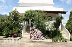 Villa Dina in Corfu Rest Areas, Corfu, Ionian Islands