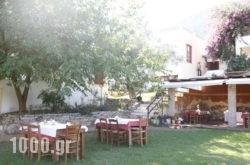 Heleni Apartments in Archea (Palea) Epidavros , Argolida, Peloponesse