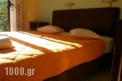Vicky Apartments in Lefkada Rest Areas, Lefkada, Ionian Islands