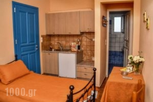 Mainades Maisonettes & Studios_best prices_in_Room_Cyclades Islands_Andros_Andros Rest Areas