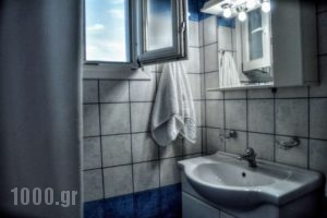 Mainades Maisonettes & Studios_lowest prices_in_Room_Cyclades Islands_Andros_Andros Rest Areas