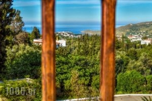 Mainades Maisonettes & Studios_accommodation_in_Room_Cyclades Islands_Andros_Andros Rest Areas