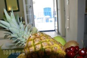 Elia Studios_best prices_in_Hotel_Cyclades Islands_Naxos_Naxos chora