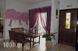 Stefanis House in Skiathos Chora, Skiathos, Sporades Islands