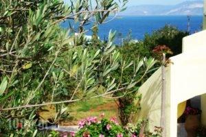 Vistamare Lodge B&B_holidays_in_Hotel_Crete_Lasithi_Aghios Nikolaos