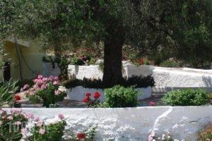 Vistamare Lodge B&B_best prices_in_Hotel_Crete_Lasithi_Aghios Nikolaos