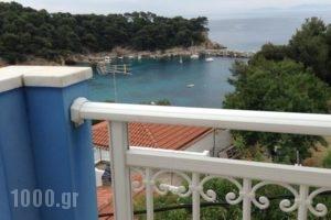 Kostas Rooms_holidays_in_Room_Sporades Islands_Skopelos_Skopelos Chora
