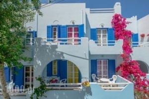 Galazia Studios_accommodation_in_Hotel_Cyclades Islands_Naxos_Naxos chora