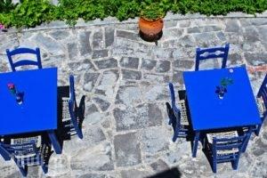 Alexandrina_lowest prices_in_Apartment_Macedonia_Halkidiki_Kassandreia