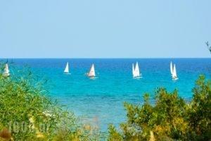 Alexandrina_best deals_Apartment_Macedonia_Halkidiki_Kassandreia