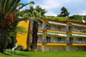 Alexandrina_best prices_in_Apartment_Macedonia_Halkidiki_Kassandreia