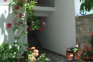 Loginos Studios_lowest prices_in_Hotel_Macedonia_Halkidiki_Kassandreia