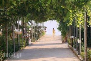 Belussi Beach_holidays_in_Hotel_Ionian Islands_Zakinthos_Zakinthos Rest Areas