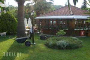 Irida_holidays_in_Hotel_Thessaly_Larisa_Ambelakia