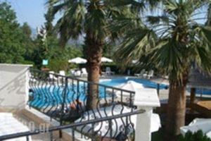 Irida_travel_packages_in_Thessaly_Larisa_Ambelakia