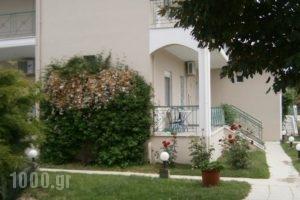 Alexander Inn Economy_lowest prices_in_Hotel_Macedonia_Thessaloniki_Thessaloniki City