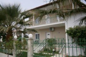 Alexander Inn Economy_accommodation_in_Hotel_Macedonia_Thessaloniki_Thessaloniki City