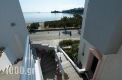 Alcioni Studios in Andros Chora, Andros, Cyclades Islands