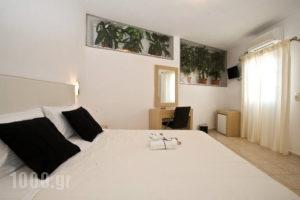 Zannis_lowest prices_in_Hotel_Cyclades Islands_Mykonos_Mykonos Chora