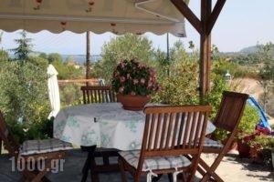 House Christina_holidays_in_Hotel_Macedonia_Halkidiki_Chalkidiki Area