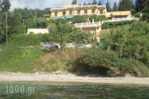 Meltemi Apartments_accommodation_in_Apartment_Ionian Islands_Corfu_Corfu Chora