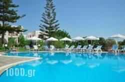 Birikos Hotel in Naxos Chora, Naxos, Cyclades Islands