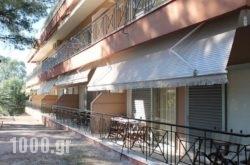 Mango Hotel in Athens, Attica, Central Greece