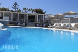 Casa Bianca_holidays_in_Hotel_Cyclades Islands_Mykonos_Mykonos ora
