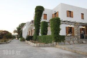 Swiss Home Hotel_best deals_Hotel_Cyclades Islands_Paros_Paros Chora