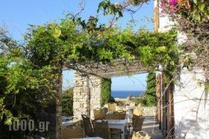 Swiss Home Hotel_holidays_in_Hotel_Cyclades Islands_Paros_Paros Chora
