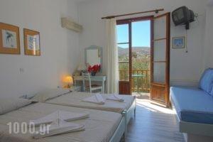 Swiss Home Hotel_lowest prices_in_Hotel_Cyclades Islands_Paros_Paros Chora