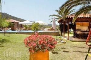 Katerina-Maria Studios & Apartments_travel_packages_in_Macedonia_Halkidiki_Chalkidiki Area