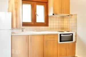 Katerina-Maria Studios & Apartments_best prices_in_Apartment_Macedonia_Halkidiki_Chalkidiki Area