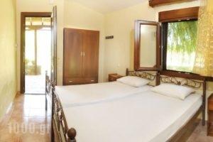 Katerina-Maria Studios & Apartments_lowest prices_in_Apartment_Macedonia_Halkidiki_Chalkidiki Area